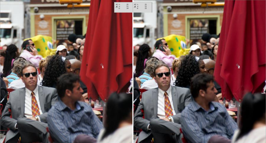 Sony a55: embedded JPEG vs. ACR render - red umbrella